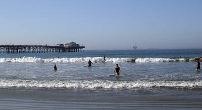 Seal_beach6