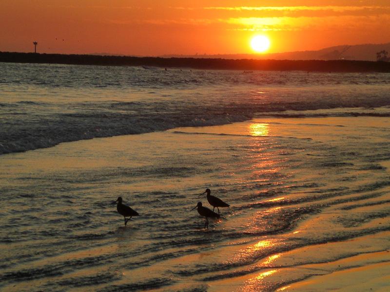 Sunset10:08