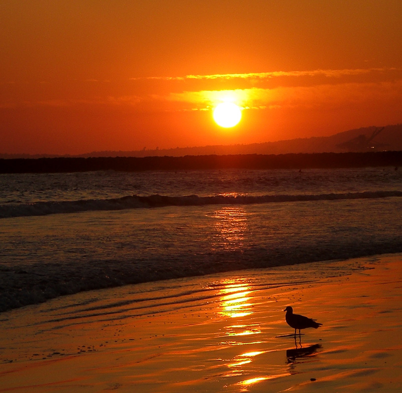 Sunset11:08