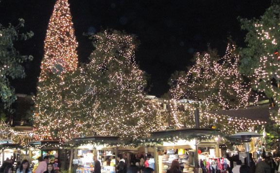 Christmas2010_7
