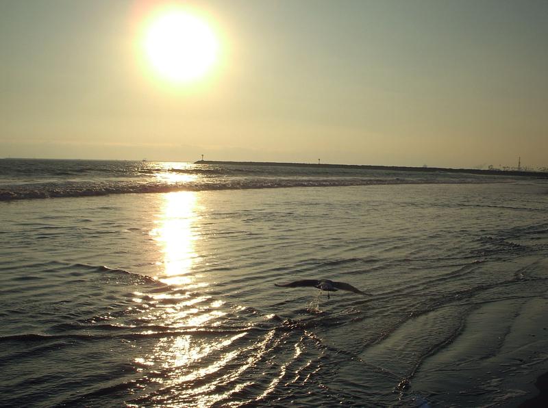 Sunset1_copy