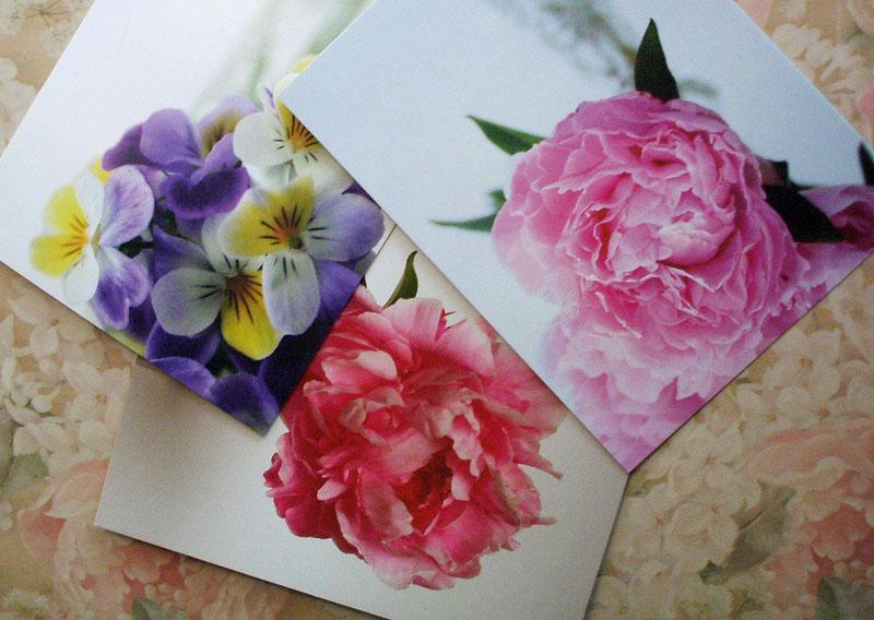 Kims_cards