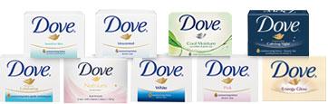 Dove3_1